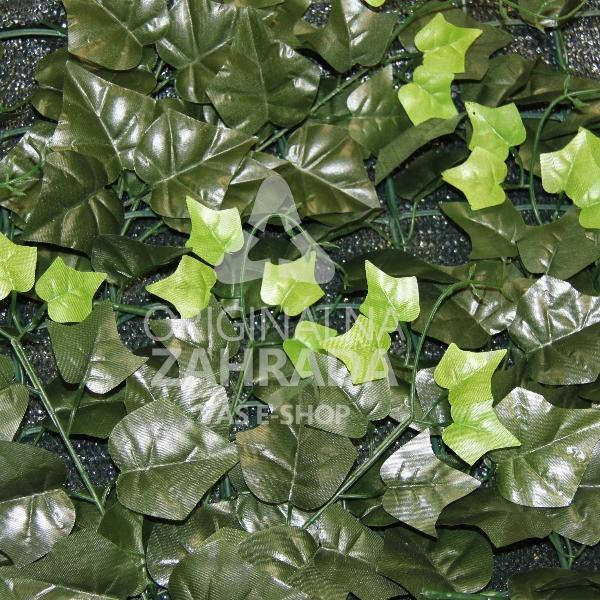 HEDERA LD, rozmer rolky 1,5x3,0 m
